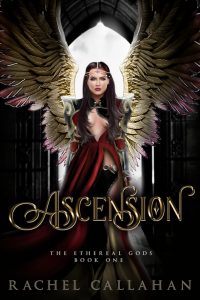 Ascension by Rachel Callahan