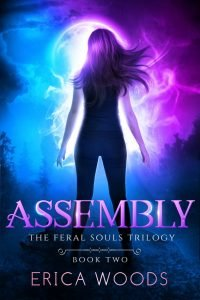 Assembly by Erica Woods